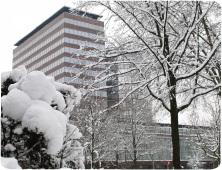 Nieuwjaarsborrel bij DNB op donderdag 31 januari 2013